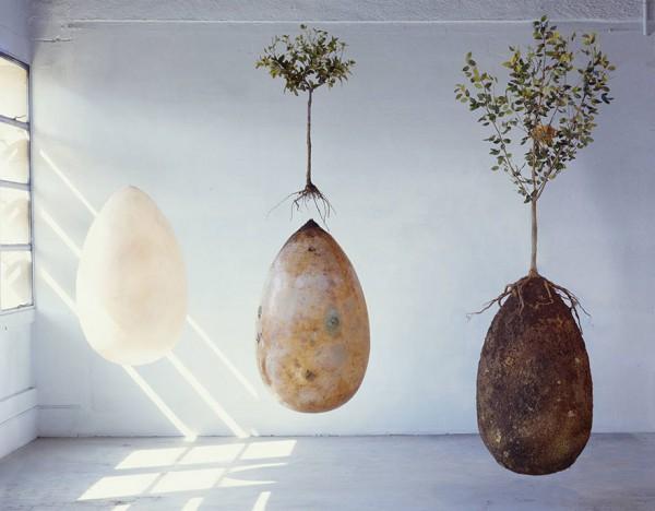 biodegradable-burial